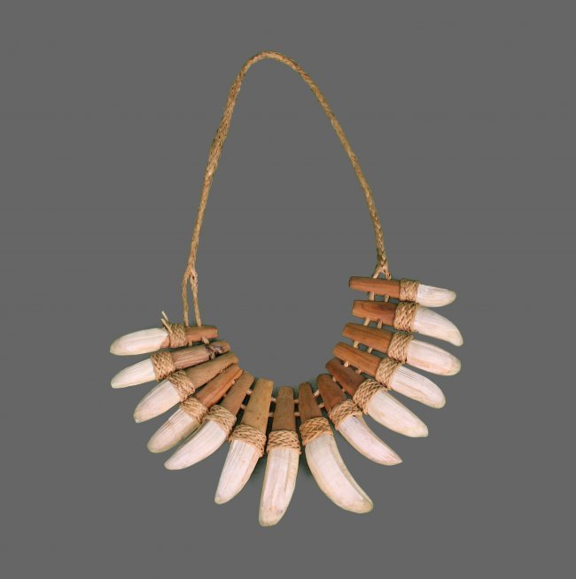 Native American Crocodile Tooth Necklace. Comes With : Lot 135