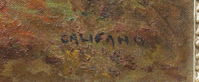 John Califano Net Worth