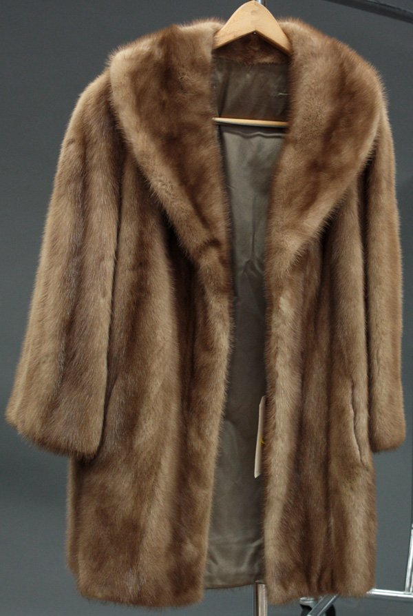 Natural Mink Images - Reverse Search