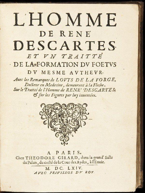 ren decartes argument for defective nature doubt