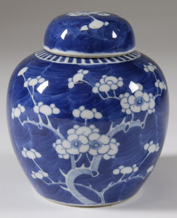 829: Chinese Blue and White Porcelain Ginger Jar 19 C.